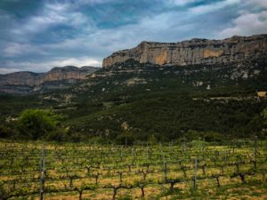 Montant Priorat backdrop