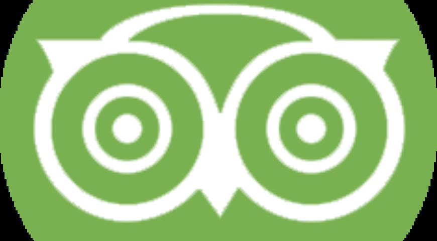 icon-tripadvisor-white green