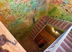 Organic wine cellar