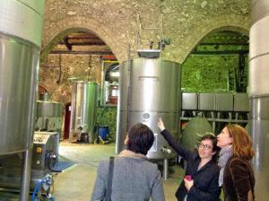 Albet i Noya wine cellar