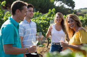 Wineries, Art & Tapas